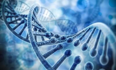 Epigenetics Dawson Church